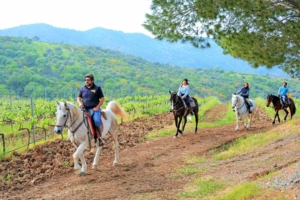 Horse riding in Sicily, Cefalu
